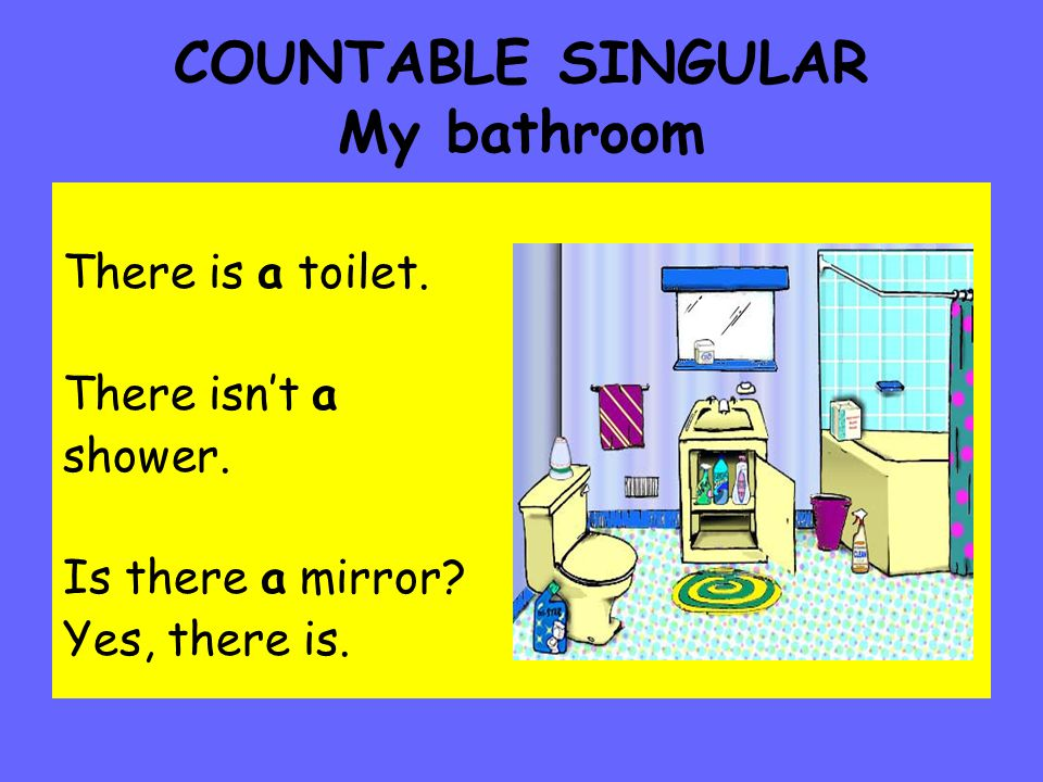 COUNTABLE SINGULAR My bathroom There is a toilet.There isn't a shower.