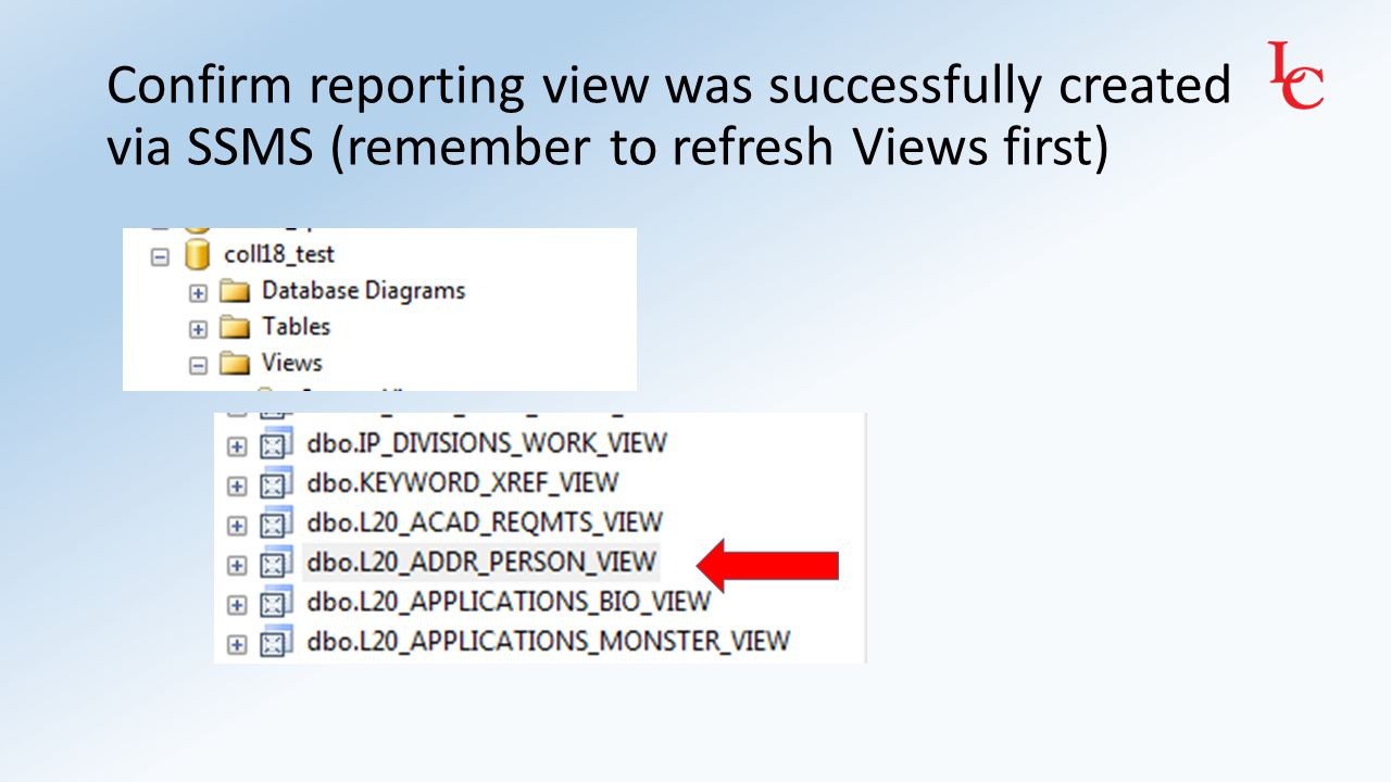 Test reporting view in SSMS and MS Query SSMS: Right Click on dbo.L20_ADDR_PERSON_VIEW -> Select Top 1000 Rows