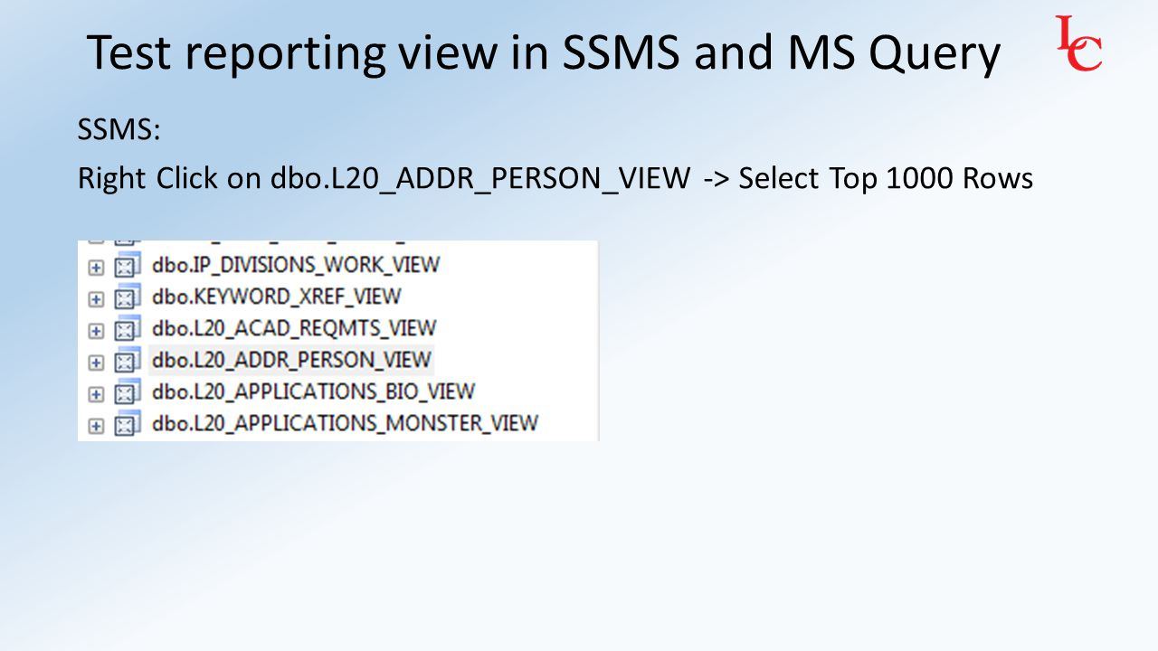 Test reporting view in SSMS and MS Query MS Query: Add table L20_ADDR_PERSON_VIEW and run queries against it: