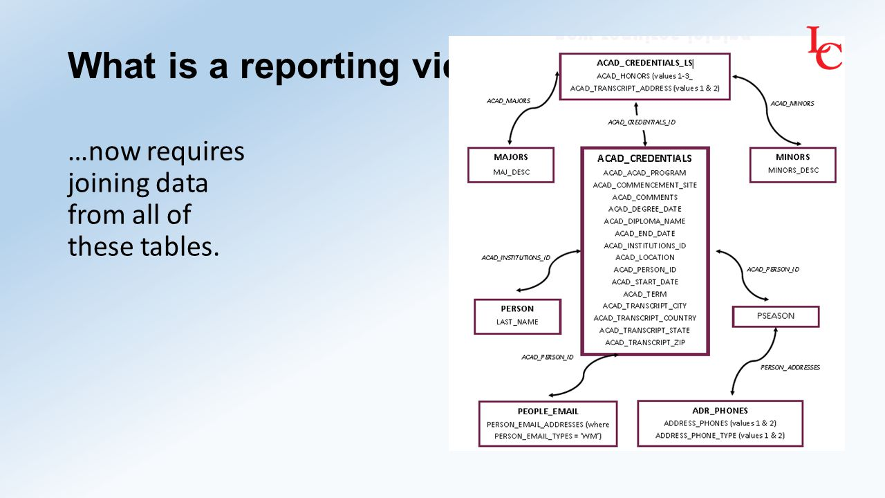 What is a reporting view.