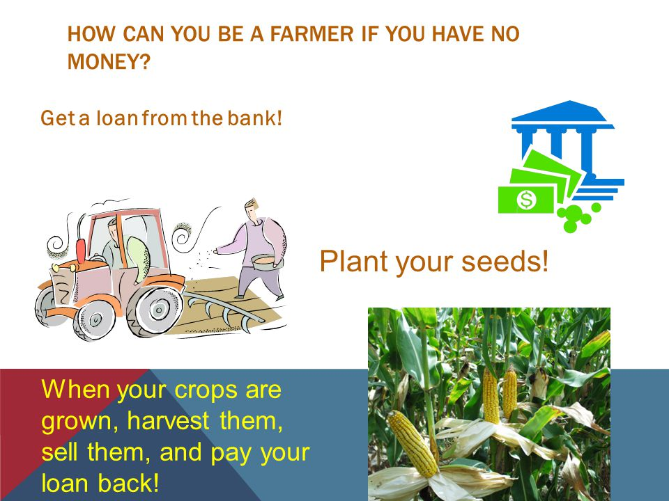 HOW CAN YOU BE A FARMER IF YOU HAVE NO MONEY.Get a loan from the bank.