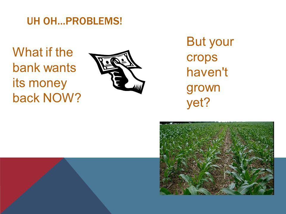 UH OH...PROBLEMS! What if the bank wants its money back NOW? But your crops haven t grown yet?