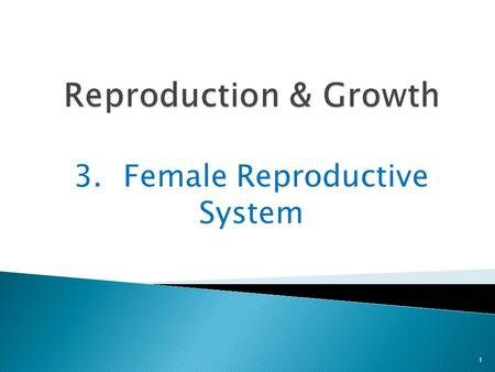 3. Female Reproductive System