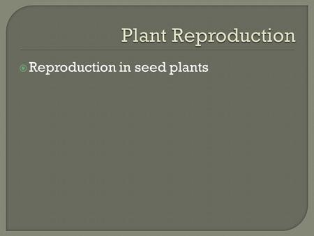  Reproduction in seed plants.  Gymnosperm seeds are not enclosed by a protective fruit.
