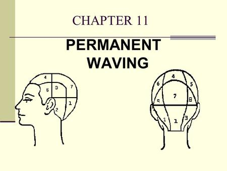CHAPTER 11 PERMANENT WAVING.
