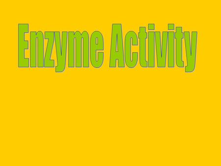 Aim: What factors affect the rate of enzyme activity? I. Factors that affect rate of Enzyme Activity A. The amount of substrate.