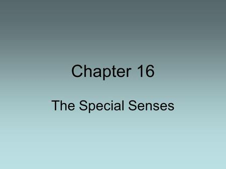 Chapter 16 The Special Senses. Smell Taste Effects of Different tastes on neurons.