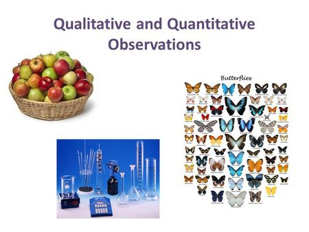 Qualitative and Quantitative Observations. Observations An observation is made when you use your 5 senses to take in information about your surroundings.