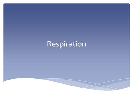 Respiration.  Release of energy from food – DON'T CONFUSE IT WITH GASEOUS EXCHANGE OR BREATHING. Respiration.