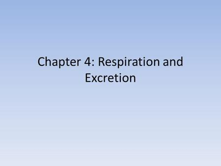 Chapter 4: Respiration and Excretion. Section 1: The Respiratory System.