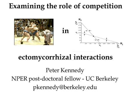 Examining the role of competition in ectomycorrhizal interactions Peter Kennedy NPER post-doctoral fellow - UC Berkeley