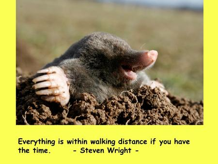 Everything is within walking distance if you have the time.- Steven Wright -
