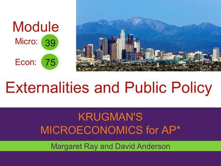 KRUGMAN'S MICROECONOMICS for AP* Externalities and Public Policy Margaret Ray and David Anderson Micro: Econ: 39 75 Module.