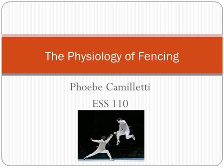 Phoebe Camilletti ESS 110 The Physiology of Fencing.