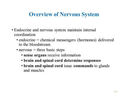 Overview of Nervous System Endocrine and nervous system maintain internal coordination endocrine = chemical messengers (hormones) delivered to the bloodstream.