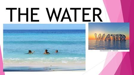 THE WATER. The water is a transparent liquid. WHAT CAN YOU DO WITH WATER? Wash Swim Drink Clean Water plant cook.
