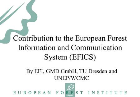 5-Feb-01 E U R O P E A N F O R E S T I N S T I T U T E Contribution to the European Forest Information and Communication System (EFICS) By EFI, GMD GmbH,