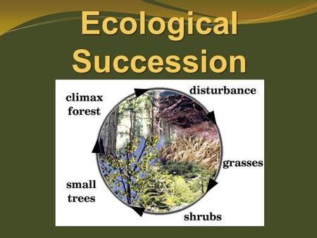Ecological Succession. more than 1 population in same area at the same time. Remember … a community…