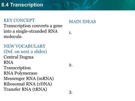 8.4 Transcription KEY CONCEPT Transcription converts a gene into a single-stranded RNA molecule. NEW VOCABULARY (Def. on next 2 slides) Central Dogma RNA.