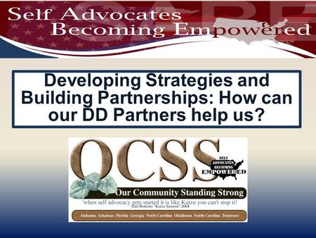 Developing Strategies and Building Partnerships: How can our DD Partners help us?