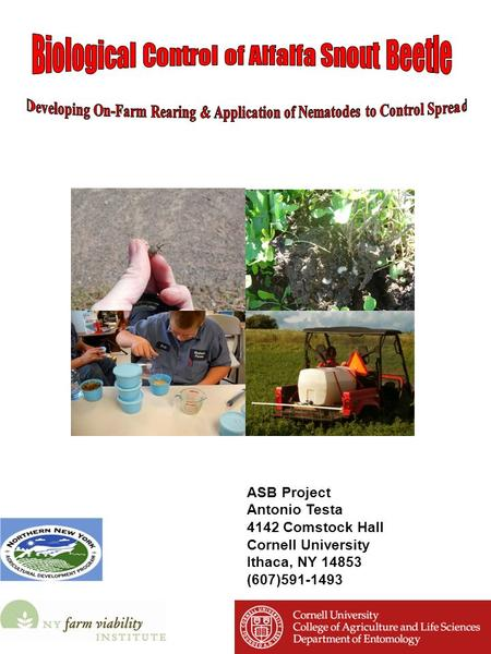 ASB Project Antonio Testa 4142 Comstock Hall Cornell University Ithaca, NY 14853 (607)591-1493.