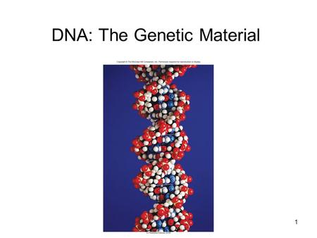 DNA: The Genetic Material 1. 2 DNA Structure DNA is a nucleic acid Composed of nucleotides –5-carbon sugar called deoxyribose –Phosphate group (PO 4 )