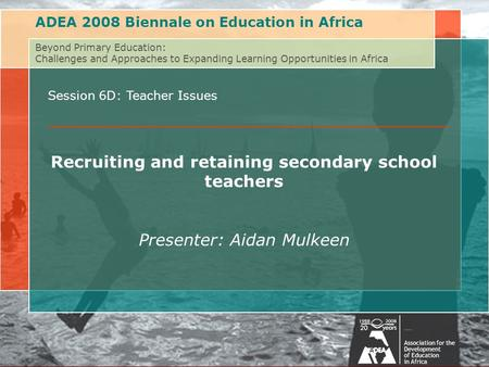 Beyond Primary Education: Challenges of and Approaches to Expanding Learning Opportunities in AfricaAssociation for the Development of Education in Africa.