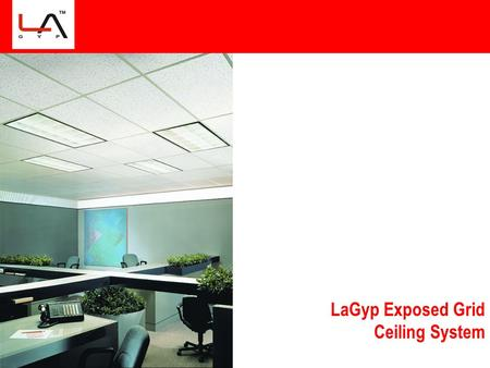 LaGyp Exposed Grid Ceiling System. Main Points for Discussion Market Specific  Market Size Estimation for Ceiling Tiles  No. of Players in Exposed Ceiling.