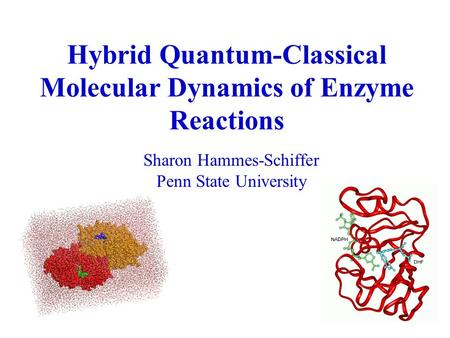 Hybrid Quantum-Classical Molecular Dynamics of Enzyme Reactions Sharon Hammes-Schiffer Penn State University.