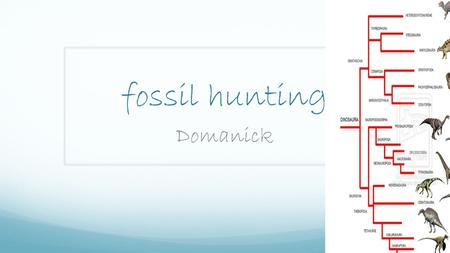 Fossil hunting Domanick. About this power point We have been reading about fossil hunters and searching for fossils.