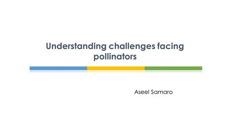Aseel Samaro Understanding challenges facing pollinators.
