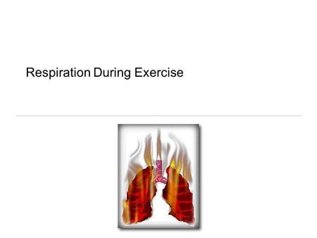 Respiration During Exercise. Terms Ventilation Respiration Pulmonary respiration Cellular respiration.