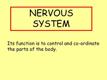 NERVOUS SYSTEM Its function is to control and co-ordinate the parts of the body.