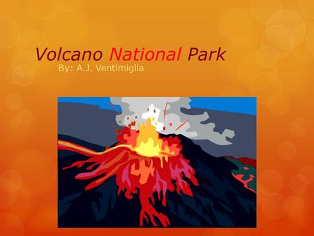 Volcano National Park By: A.J. Ventimiglia. When was it established? It was established on August 1, 1916.