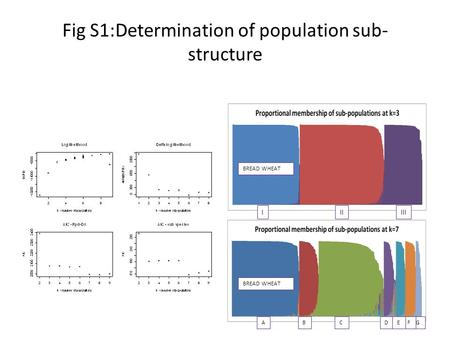 Fig S1:Determination of population sub- structure IIIIII ADCBGFE BREAD WHEAT.