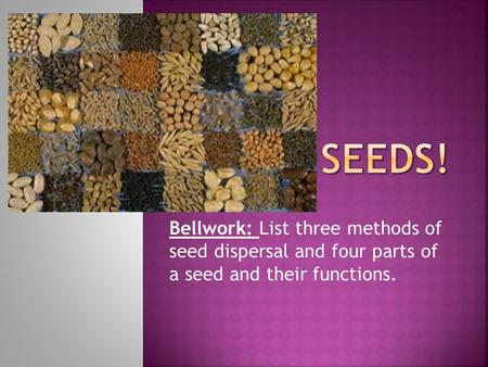 Bellwork: List three methods of seed dispersal and four parts of a seed and their functions.
