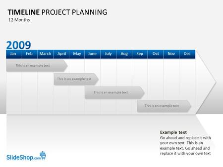 This is an example text TIMELINE PROJECT PLANNING DecOctSepAugJulyJuneAprilMarchFebJanMayNov 12 Months Example text Go ahead and replace it with your own.