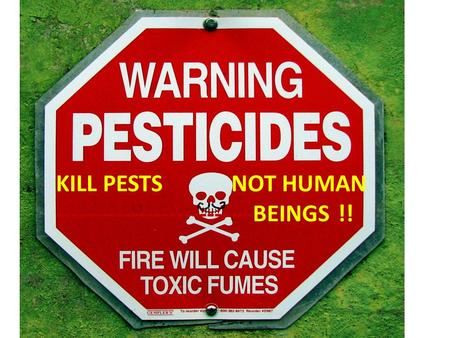 KILL PESTS NOT HUMAN --------------------------BEINGS !!