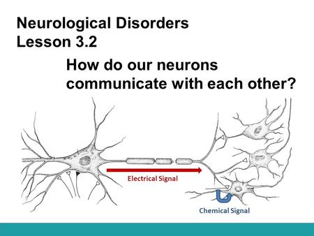 Neurological Disorders Lesson 3.2 How do our neurons communicate with each other? Chemical Signal Electrical Signal.