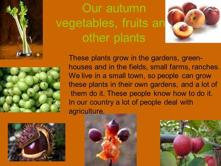 Our autumn vegetables, fruits and other plants These plants grow in the gardens, green- houses and in the fields, small farms, ranches. We live in a small.