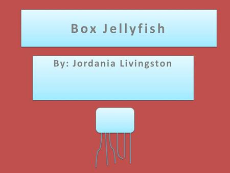Box Jellyfish By: Jordania Livingston. Characteristic  Have a cube like shape  Stings are extremely venomous  Almost as tall as a human  Live in Australia!