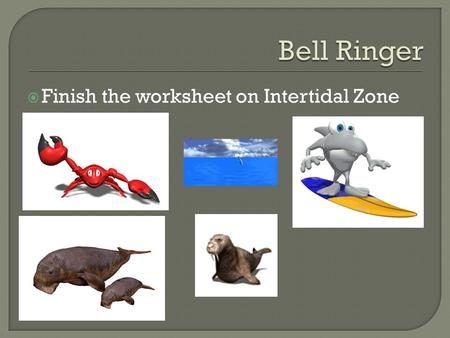  Finish the worksheet on Intertidal Zone.  You will label the ocean floor.  6 points to label.