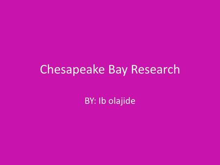Chesapeake Bay Research BY: Ib olajide. Why is it important to have a variety of living things in the Bay? It is important to have variety of animals.