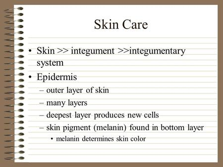 Skin Care Skin >> integument >>integumentary system Epidermis –outer layer of skin –many layers –deepest layer produces new cells –skin pigment (melanin)