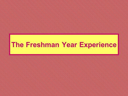 The Freshman Year Experience. FYE The program is designed primarily for undecided students Two-semesters long Student development program.