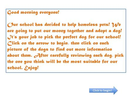 Good morning everyone! Our school has decided to help homeless pets! We are going to put our money together and adopt a dog! It's your job to pick the.