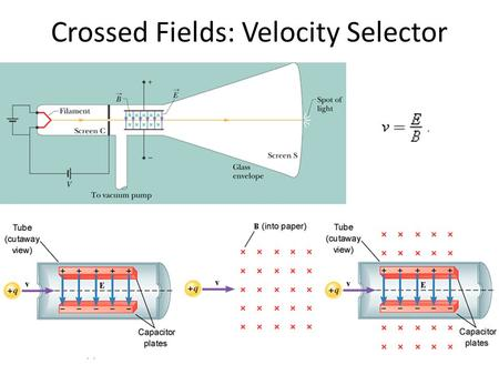 Crossed Fields: Velocity Selector. A Circulating Charged Particle.