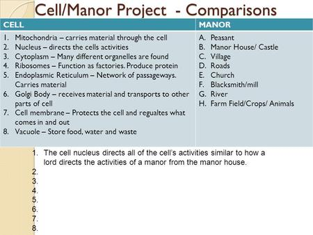 Cell/Manor Project - Comparisons CELLMANOR 1.Mitochondria – carries material through the cell 2.Nucleus – directs the cells activities 3.Cytoplasm – Many.