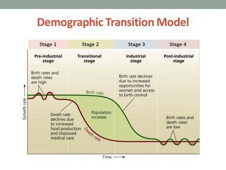demographic transition model worksheet pdf