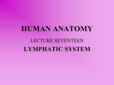 HUMAN ANATOMY LECTURE SEVENTEEN LYMPHATIC SYSTEM.